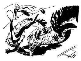 Иллюстрация 24