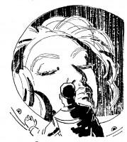 Иллюстрация 35